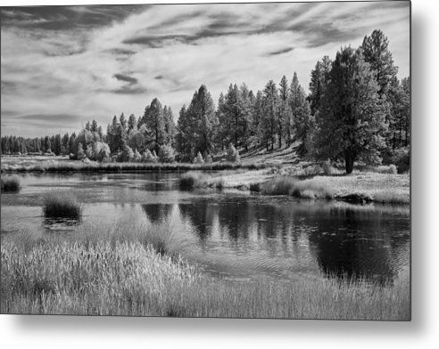Using a camera converted to the infrared spectrum this photograph was taking at the turnbull preserve in washington state this photograph was shot with a