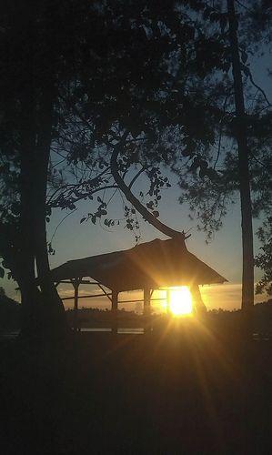 Bandung - Indonesia, Sunset. #Sunset #Tree #Bandung #Indonesia