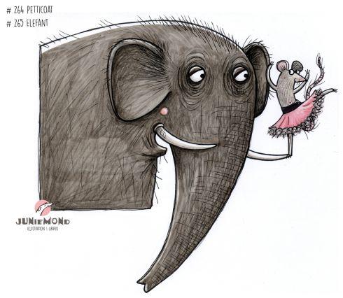 #264 #265-2017 Petticoat Elefant