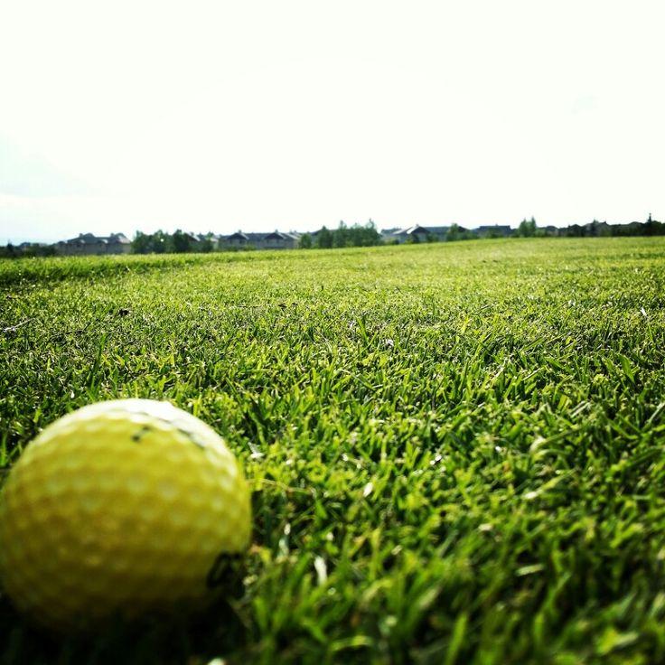 Nice golf day