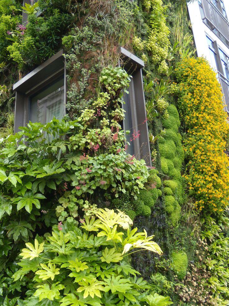 Jardín vertical, Ateneo de Piccadilly, Londres