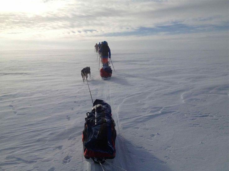 Mit Schlitten, Zelten und Huskys: Sieben Tage lang geht es von West nach Ost, von Alta nach Karasjok an der finnischen Grenze. Auf Skiern quer durch das Herzland der Samen und ihrer Rentiere..