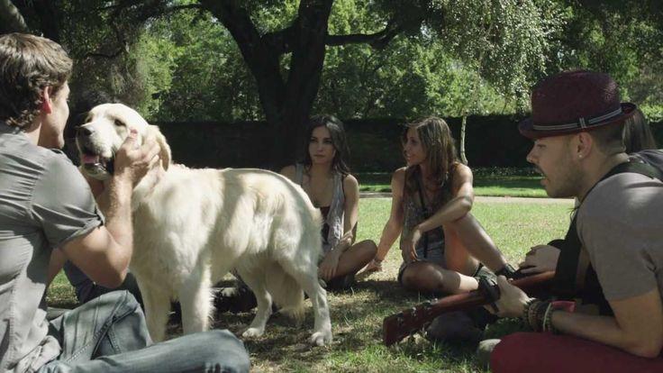 Jesse & Joy - ¿Con Quien Se Queda El Perro? (Video Oficial) (+lista de r...