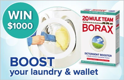 WIN $1,000 and a year's supply of 20 Mule Team Borax!Team Borax, Cleaning Ideas, Households Items, Favorite Site, Win 1 000, Contest Pin, Worth, Rose Bray, Mule Team
