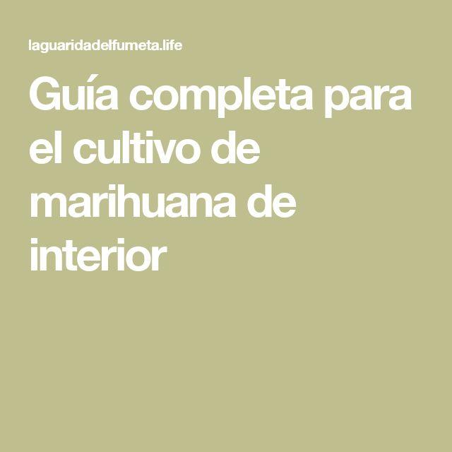 Guía completa para el cultivo de marihuana de interior