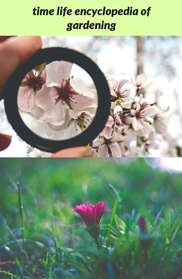 9159cd0a5f38f77ab97ae6b006dfa72f - The Time Life Encyclopedia Of Gardening