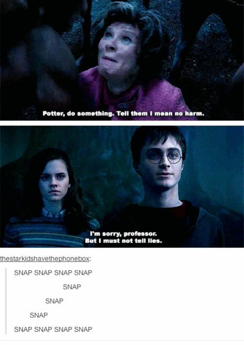 The Harry Potter fandom