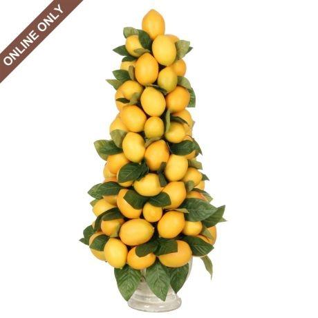 Lemon Topiary Topiary Lemon And Centerpieces