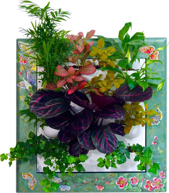 Фитокартины Flowall | фитостены | фитомодули #vertical_garden #greenwall #livingwall #Green_Wall #minigarden #фитокартины #фитостены #Flowall #Garden_Decorating #Garden_ideas #Best_Gardening