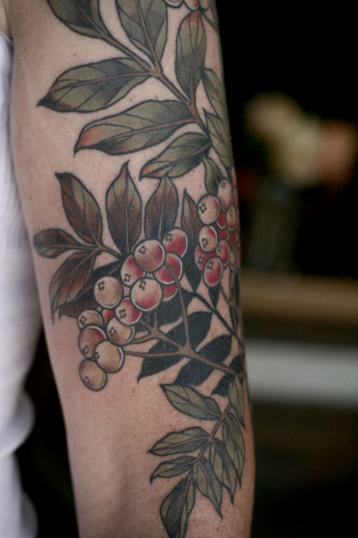 25 best ideas about giving tree tattoos on pinterest for Rowan tree tattoo