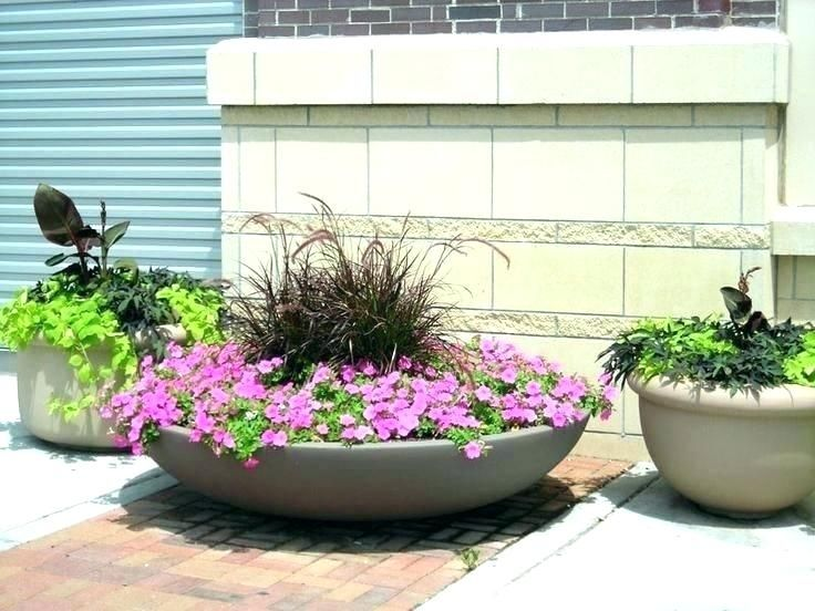 Shallow Garden Planters Planter Bowls Large Big Flower Pots And