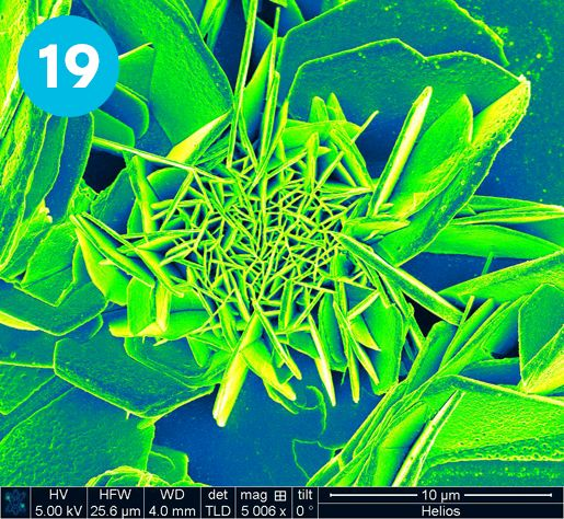CRANN | NanoArt 2013 'Flourishing crystals of MgO' by Nikolay Petkov, Tyndall.