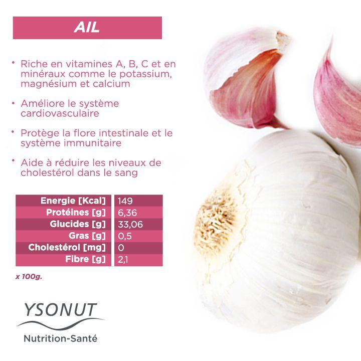 Saviez-vous que l'#ail est un bon allié pour protéger votre système #immunitaire ? Aide à augmenter les #défenses immunitaires et à protéger la flore intestinale mais pour profiter pleinement de toutes ses vertus, c'est encore mieux de le consommer cru.