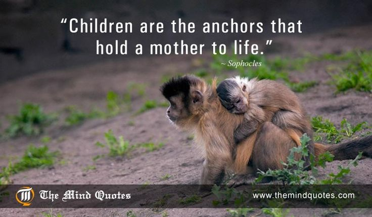 #Children are the anchors that hold a #mother to life.Sophocles Quotes on Children and #Mothers Day. Read, Think and Share on themindquotes