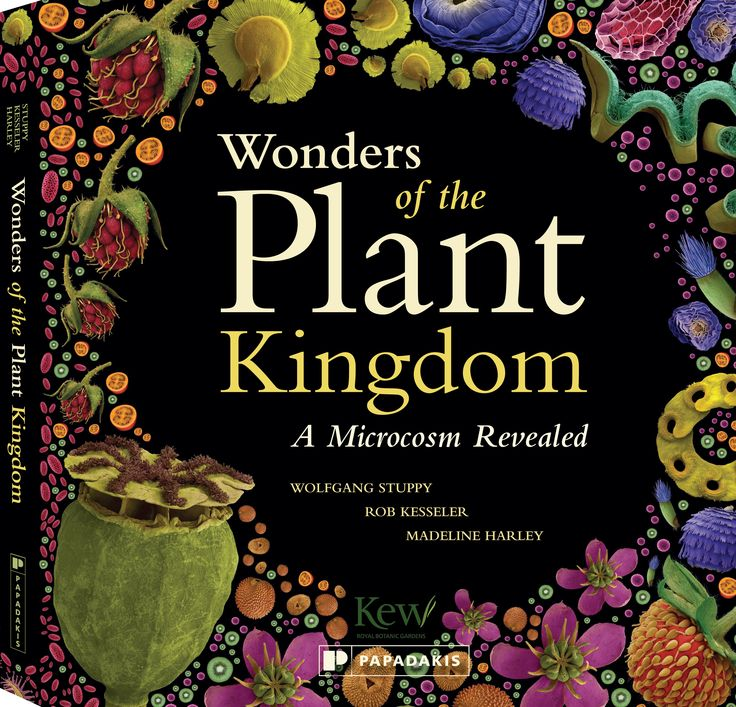 Wonders of the Plant Kingdom by Wolfgang Stuppy, Rob Kesseler and Madeline Harley
