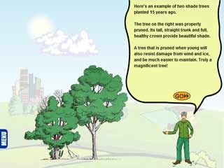 Tree Pruning Guide Animation ... great tutorial.  After taking this lesson, I am confident that I can properly prune our trees myself.