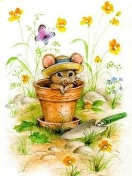 'Garden Mouse'