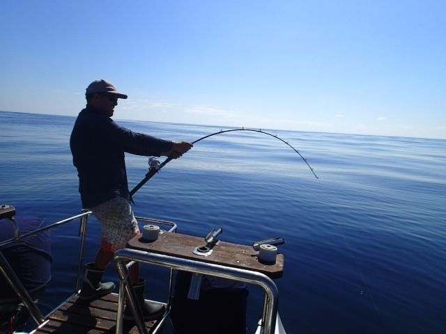 Beautiful day on the Sea (Cape Town) http://www.xtremecharters.co.za