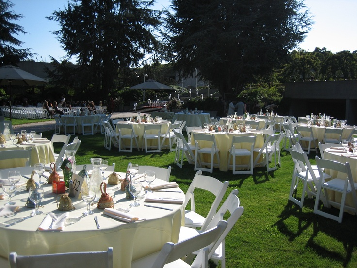 Buttercup Linens And White Resin Folding Chairs