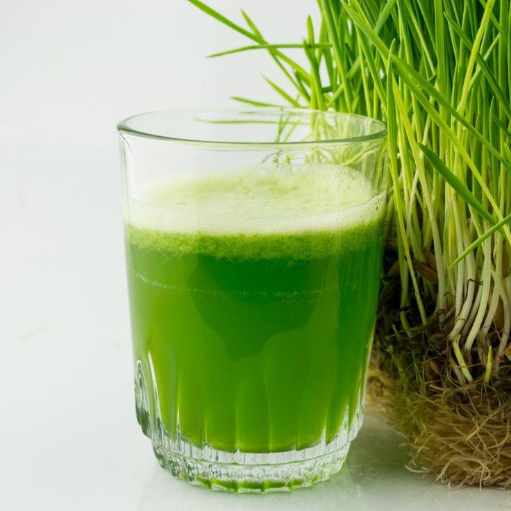 Danke für den Beitrag an Gesundheitliche Aufklärung. Weizengras ist ein altbewährtes Heil- und Nahrungsmittel und zählt aufgrund seines Reichtums an Chlorophyll und über 100 weiteren Vitalstoffen zu den echten Superfoods. Vor tausenden von Jahren wusste man bereits von den Kräften des...
