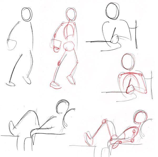 Human+Body+Proportions | Human anatomy fundamentals: basic body proportions