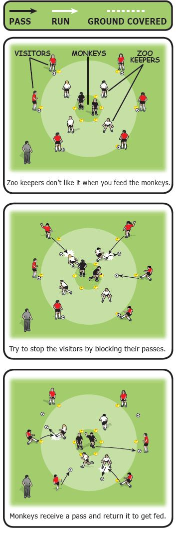 This soccer (football) coaching game is all about accuracy and playing the correct weight of pass, good ball control and first touch, and anticipating and intercepting passes. When you play the game, ensure the players are rotated so they all have a turn as monkeys, zoo keepers and visitors.