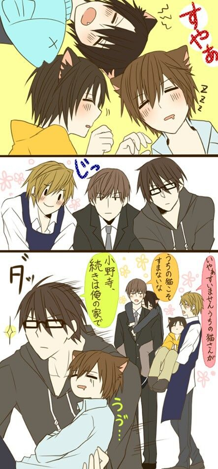 """Yukina is always happy when he sees Kisa like this. Then the others are just like, """"Do I have to do this again."""""""