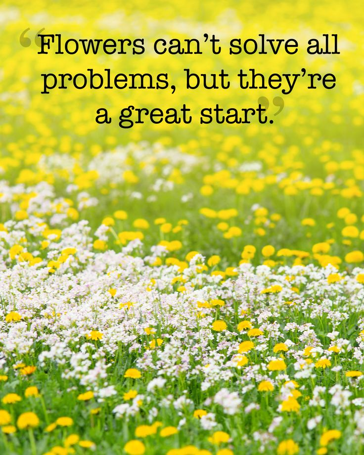 1000+ Quotes About Spring On Pinterest