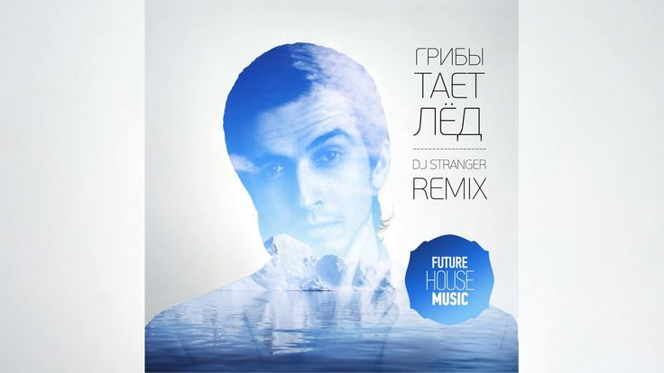 Грибы - Тает Лёд (DJ Stranger Remix) [Future House]