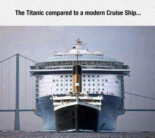 Ship Size Comparison - The Meta Picture