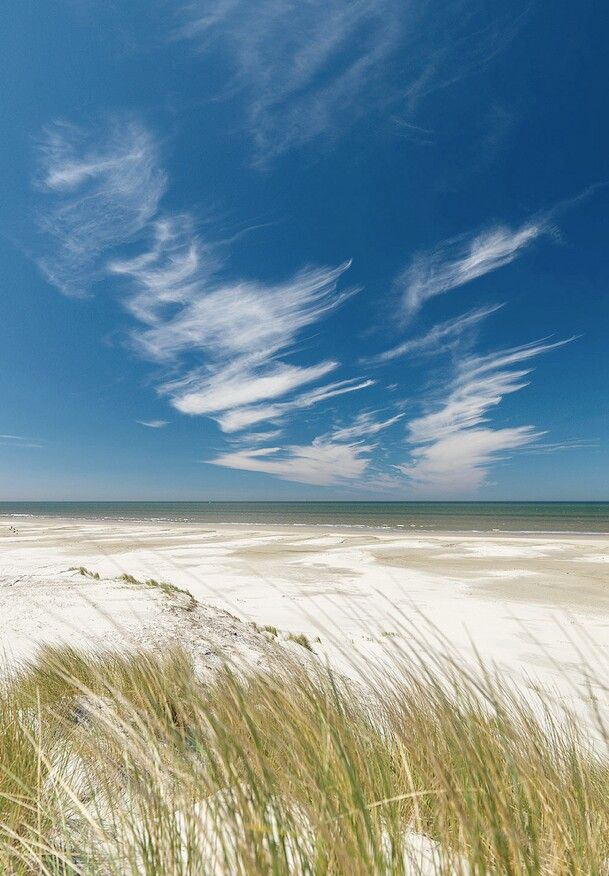 Terschelling beach. One of the Wadden islands @ the Netherlands
