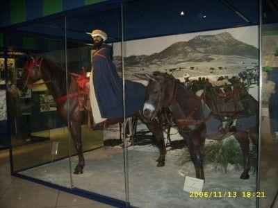"""GOUMIER MONTE ET SA MONTURE. 1908-1956 : Armée d'Afrique: Troupes indigènes: """"Les Goums mixtes marocains""""."""