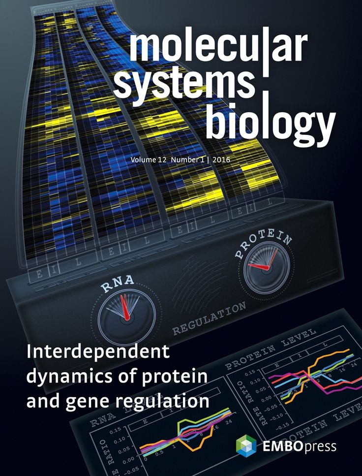 About the Cover — January 01, 2016, 12 (1) | Molecular Systems Biology