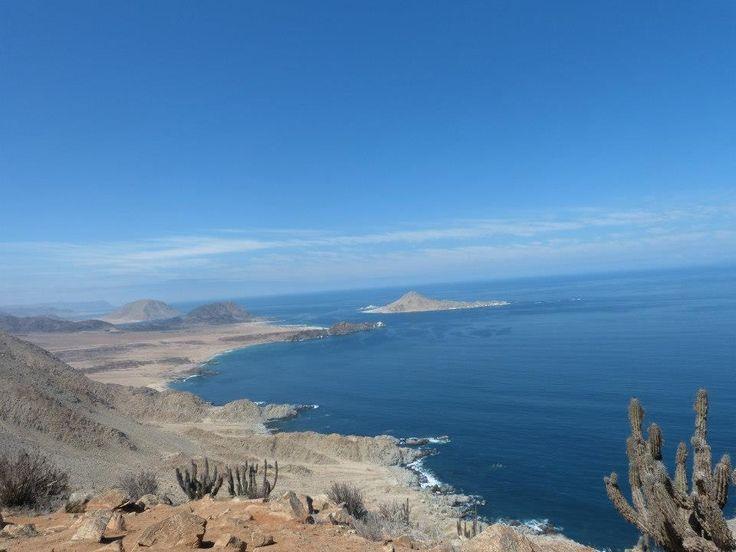 Isla Pan de Azúcar. Chañaral Chile