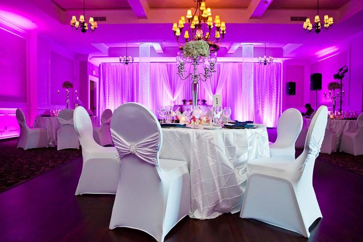 Looking for huge selection of Chair Covers for Rental, check out our spandex chair covers. We rent the spandex chair cover in multiple colors, Use our matching linens, napkins and table runners to make your event even more special.  #Whitespandexchaircover #WeddingTableSkirts #Ivorysatinsash #RoyalBlueSash