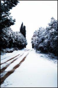téli táj