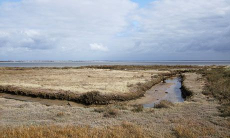 Stephen Emms explores the Dengie Peninsula, a hidden gem in Essex