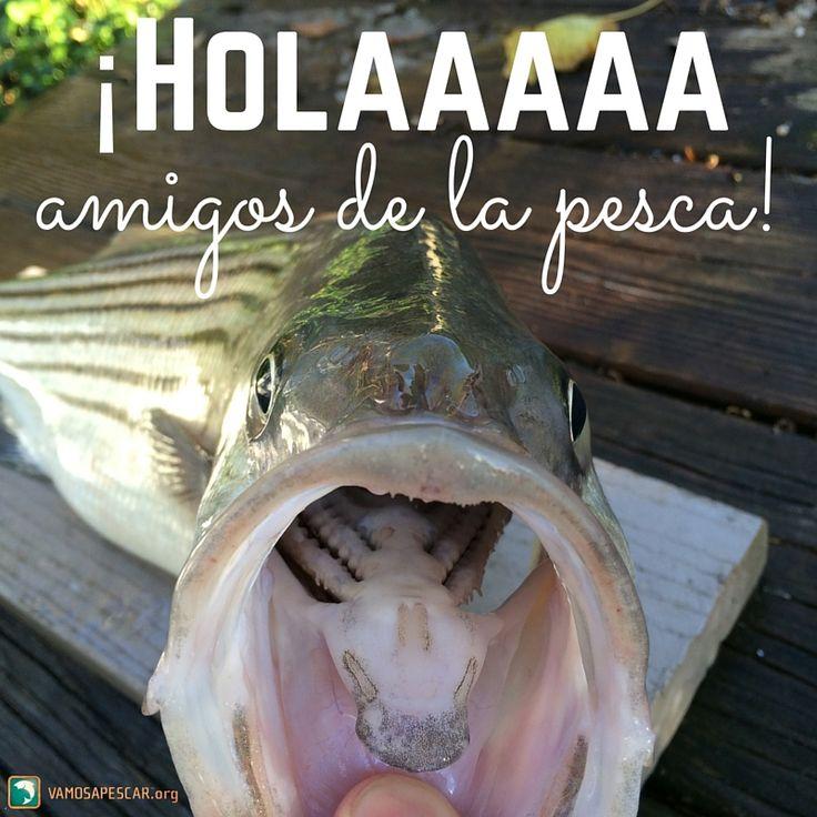 Aprende todo sobre la pesca en bote: http://vamosapescar.org/como-pescar/pescar-es-facil/equipo-de-pesca
