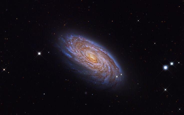 Красивая спиральная галактика М88 из созвездия Волосы Вероники. Эта звездная система находится на расстоянии 47 миллионов световых лет от Земли. В ядре М88 идут активные процессы, связанные, вероятно, со взаимодействием вещества галактики и сверхмассивной черной дыры. Астрономы установили, что масса центральной черной дыры составляет около 80 миллионов масс Солнца