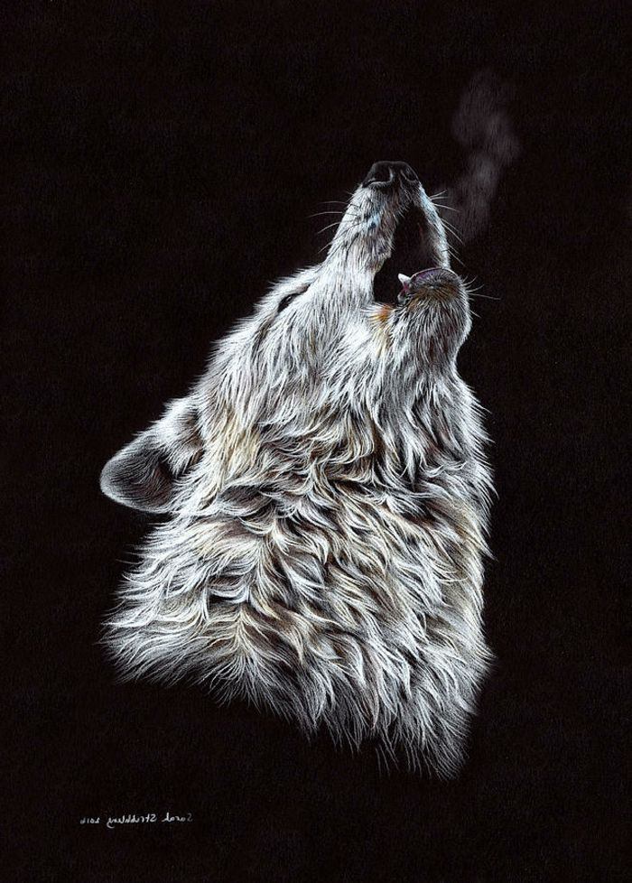 Les 1066 meilleures images du tableau art sur pinterest - Dessin animaux noir et blanc ...