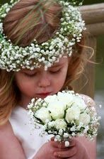 Gypsophila circlet headress with avalanche roses, pearls in centre of each rose and gypsophila collar. Beautiful.