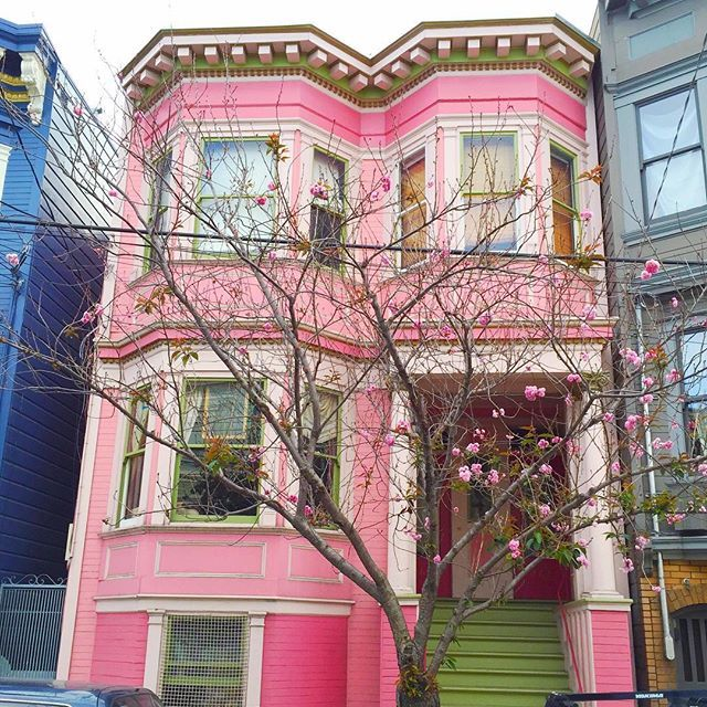 💕pink Victorian Smile, you're on Candy Camera! #sf #sanfrancisco #california #california_igers #instacolor #colorsplurge #pastelcolors #candycolors #pink #lightpink #colors_hub #colorworld #rainbow_wall #pocket_colors #tv_colors #popyacolour #houseportrait #casas #houses_ofthe_world #colorgram #thecity #caligrammers #nowrongwaysf #streetsofsf #norcal #colorfulhouses