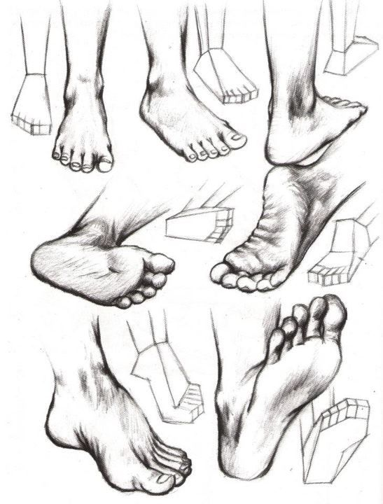 body parts such as drawing, feet