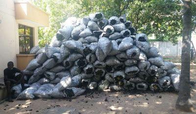 Corpoguajira concertará con indígenas Wayuu solución para producción de carbón vegetal