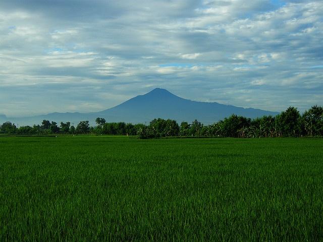 Mount Slamet, Indonesia
