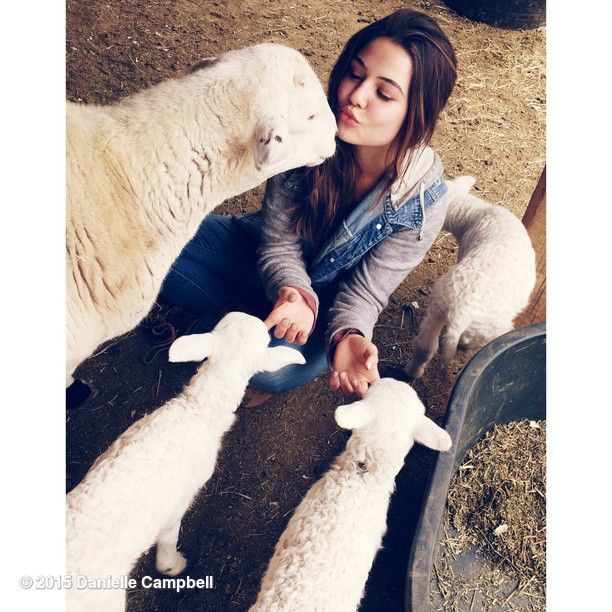 Danielle Campbell Actor