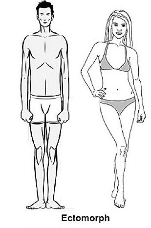 The Ectomorph's Guide To Mass