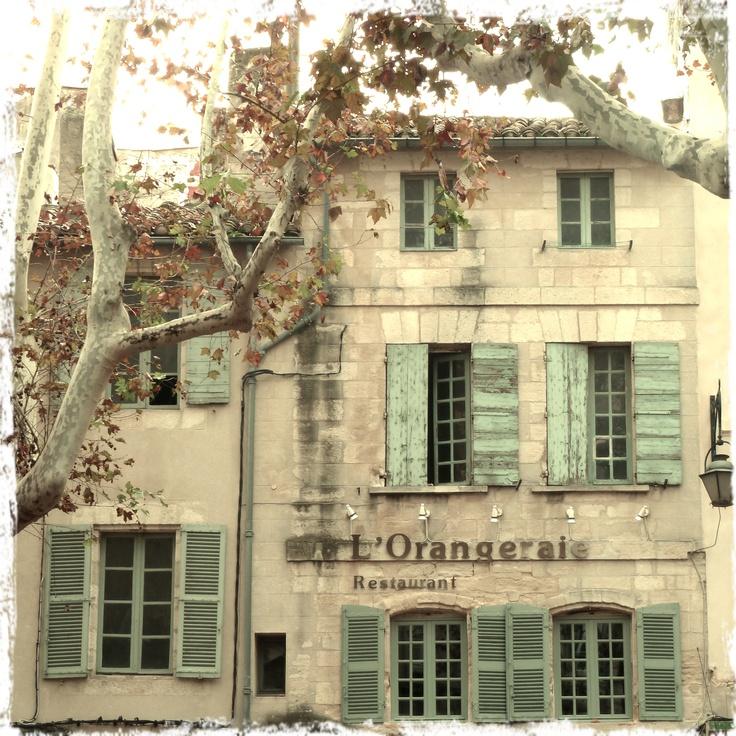 L'Orangeraie, Avignon