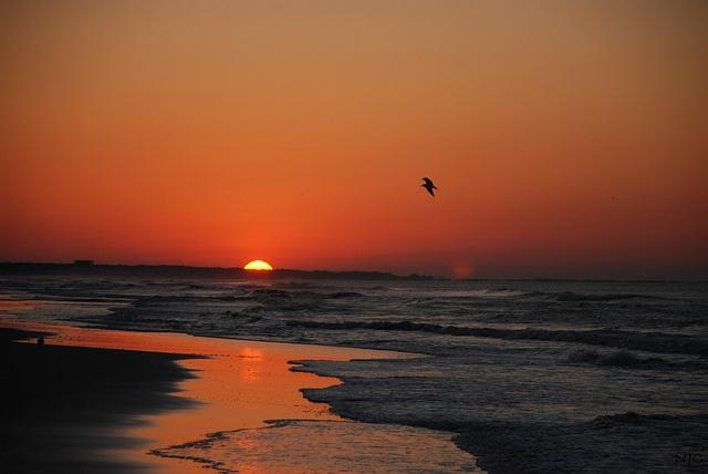 sunrise on Dauphin Island, Alabama