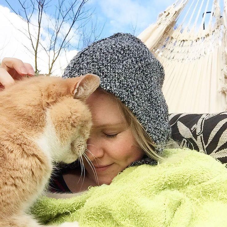 It was cold but loved it! Hammock life  ---------- #catstagram #cat #kat #catsofinstagram #catsofig #catlover #instacat #catoftheday #ilovemycat #purr #pet #furball #petstagram #katten #meow #kitty  #notmycat #indetuin #gingercat #lifewithcats #hammock #hammocklife #hangmat by @snorhaartje